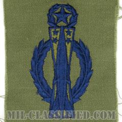 ミサイル運用章 (コマンド)(Command Missile Operations Badge)[サブデュード/ブルー刺繍/パッチ]の画像