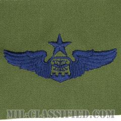 航空士章 (ナビゲーター・シニア)(Navigator/Observer Badge, Senior)[サブデュード/ブルー刺繍/パッチ]の画像