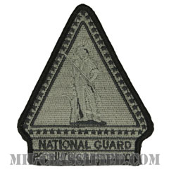 州兵募兵維持(National Guard Recruiting and Retention)[UCP(ACU)/メロウエッジ/ベルクロ付パッチ]の画像
