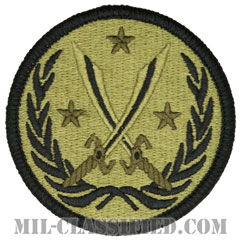 生来の決意作戦・連合タスクフォース(対ISIL)(CJTF-OIR)[OCP/メロウエッジ/ベルクロ付パッチ]の画像