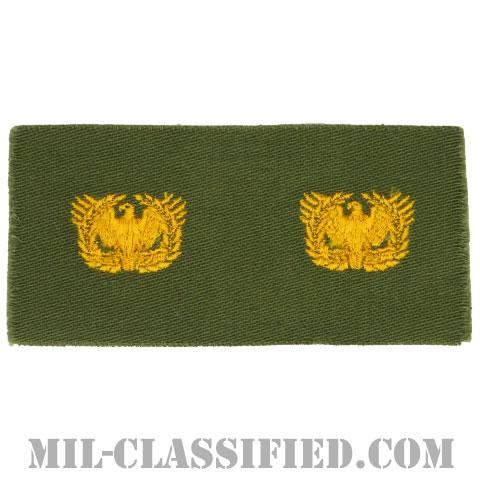 准尉章(Warrant Officers)[カラー/兵科章/パッチ/ペア(2枚1組)]の画像