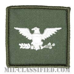 大佐(Captain)[フライトスーツ用セージグリーン/海軍階級章/ペア(2枚1組)]の画像