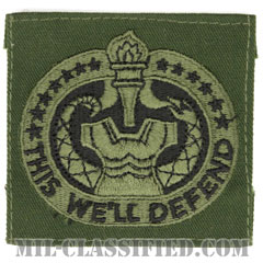 教育係軍曹識別章(Drill Sergeant Identification Badge)[サブデュード/パッチ]の画像