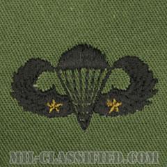 戦闘空挺章 (ベーシック) 降下2回(Combat Parachutist Badge, Basic, Two Jump)[サブデュード/パッチ]の画像