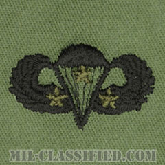 戦闘空挺章 (ベーシック) 降下3回(Combat Parachutist Badge, Basic, Three Jump)[サブデュード/パッチ]の画像