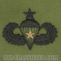 戦闘空挺章 (シニア) 降下1回(Combat Parachutist Badge, Senior, One Jump)[サブデュード/パッチ]の画像