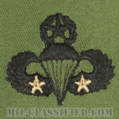 戦闘空挺章 (マスター) 降下2回(Combat Parachutist Badge, Master, Two Jump)[サブデュード/パッチ]の画像