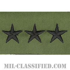 中将(Lieutenant General (LTG))[サブデュード/階級章/パッチ/ペア(2枚1組)]の画像