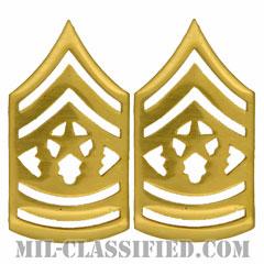 最先任上級曹長(Command Sergeant Major (CSM))[カラー/階級章/バッジ/ペア(2個1組)]の画像