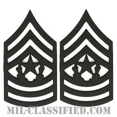 最先任上級曹長(Command Sergeant Major (CSM))[サブデュード(ブラックメタル)/階級章/バッジ/ペア(2個1組)]の画像
