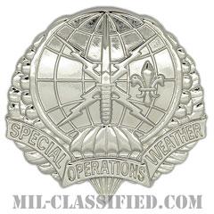 特殊気象観測チーム(Special Operations Weather Team (SOWT))[カラー/ベレー章/鏡面仕上げ/バッジ]の画像