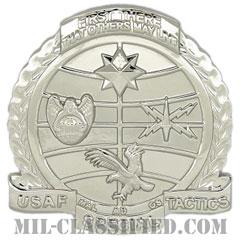 特殊戦術将校(Special Tactics Officer (STO))[カラー/ベレー章/鏡面仕上げ/バッジ]の画像