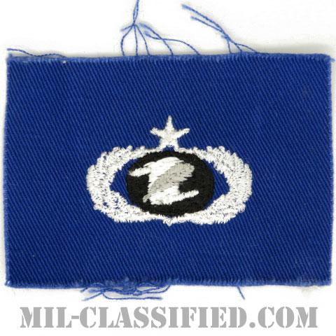 情報管理章 (シニア)(Information Management/Administration Badge, Senior)[カラー/空軍ブルー生地/パッチ]の画像