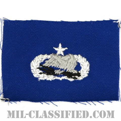 空港システムレーダー整備章 (シニア)(Airfield Systems and Radar Maintenance Badge, Senior)[カラー/空軍ブルー生地/パッチ]の画像