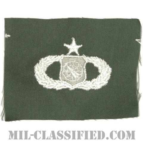 兵器指揮章 (シニア)(Weapons Director Badge, Senior)[カラー/空軍セージグリーン生地/パッチ]の画像