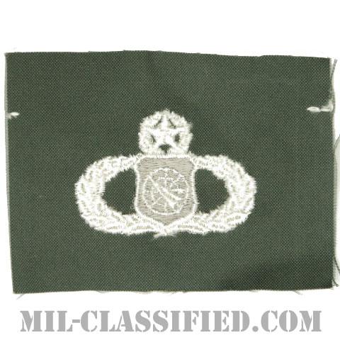 兵器指揮章 (マスター)(Weapons Director Badge, Master)[カラー/空軍セージグリーン生地/パッチ]の画像