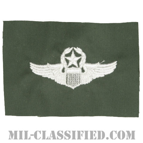 航空機操縦士章 (コマンド・パイロット)(Air Force Command Pilot Badge)[カラー/空軍セージグリーン生地/パッチ]の画像
