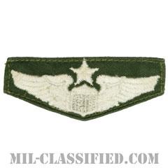 航空機操縦士章 (シニア・パイロット)(Air Force Senior Pilot Badge)[カラー/パッチ/中古1点物]の画像