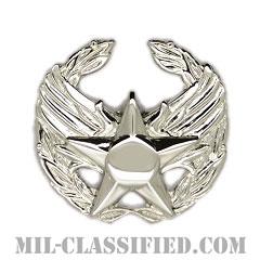 指揮官章(Commander's Badge)[カラー/鏡面仕上げ/バッジ]の画像