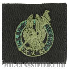 陸軍募兵章(Army Basic Recruiter Identification Badge)[サブデュード/パッチ]の画像