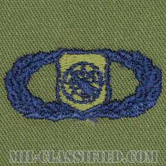 兵器指揮章 (ベーシック)(Weapons Director Badge, Basic)[サブデュード/ブルー刺繍/パッチ]の画像