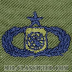 兵器指揮章 (シニア)(Weapons Director Badge, Senior)[サブデュード/ブルー刺繍/パッチ]の画像