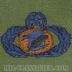 情報管理章 (マスター)(Information Management/Administration Badge, Master)[サブデュード/ブルー刺繍/パッチ]の画像