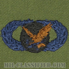 補給・燃料章 (ベーシック)(Supply and Fuels Badge, Basic)[サブデュード/ブルー刺繍/パッチ]の画像