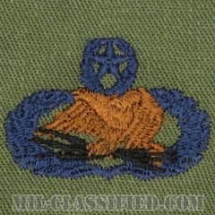 空港システムレーダー整備章 (マスター)(Airfield Systems and Radar Maintenance Badge, Master)[サブデュード/ブルー刺繍/パッチ]の画像