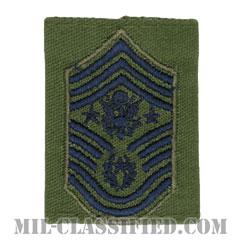 空軍最先任上級曹長(Chief Master Sergeant of the Air Force (CMSAF))[サブデュード(Subdued)/ゴアテックスパーカー用スライドオン空軍階級章]の画像