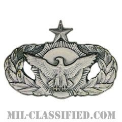 警備機能章 (シニア)(Security Police Functional Badge, Senior)[カラー/燻し銀/バッジ]の画像