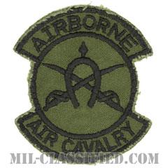 第17騎兵連隊第1大隊(1st Squadron, 17th Cavalry Regiment)[サブデュード/カットエッジ/パッチ/中古1点物]の画像
