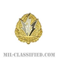第6心理作戦大隊(6th Psychological Operations Battalion)[カラー/クレスト(Crest・DUI・DI)バッジ]の画像