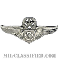 空中戦闘管制章 (マスター)(Air Battle Manager Badge, Master)[カラー/鏡面仕上げ/バッジ]の画像