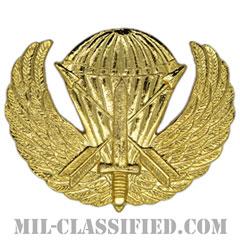 特殊部隊章(スペシャルフォース章)試作品(Special Forces Badge, Prototype)[カラー/1979-1981/バッジ/レプリカ]の画像