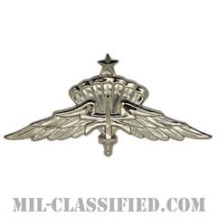 自由降下章(シニア)試作品(Military Freefall Parachutist Badge, HALO, Senior, Prototype)[カラー/1980s/バッジ/レプリカ]の画像