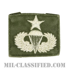 空挺章 (シニア)(Parachutist Badge, Senior, Senior)[カラー/パッチ/中古1点物]の画像