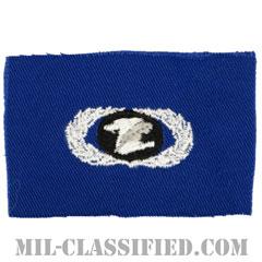 情報管理章 (ベーシック)(Information Management/Administration Badge, Basic)[カラー/空軍ブルー生地/パッチ]の画像