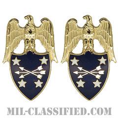 アメリカ合衆国国防長官補佐官(Aide to the Secretary of Defense)[カラー/兵科章(将校用)/バッジ/ペア(2個1組)]の画像
