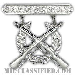 ライフル射撃技術章 (エキスパート)(Marksmanship Badge, Rifle Expert)[カラー/鏡面仕上げ/バッジ]の画像