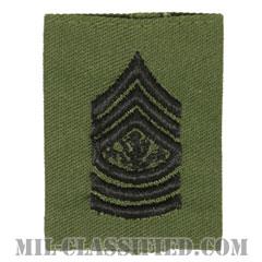 陸軍最先任上級曹長(Sergeant Major of the Army (SMA))[サブデュード/ゴアテックスパーカー用スライドオン階級章]の画像
