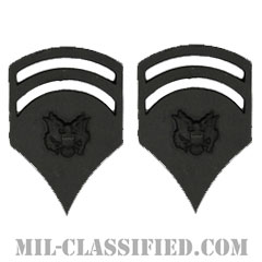 特技兵 (SP6)(Specialist 6)[サブデュード(ブラックメタル)/階級章/バッジ/ペア(2個1組)]の画像