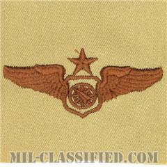 空中戦闘管制章 (シニア)(Air Battle Manager Badge, Senior)[デザート/パッチ]の画像