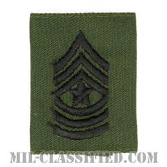 上級曹長(Sergeant Major (SGM))[サブデュード/ゴアテックスパーカー用スライドオン階級章]の画像