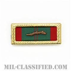 RVN Civil Actions Medal Unit Citation [リボン(略綬・略章・Ribbon)/ラージフレーム・パームデバイス付/陸軍用部隊表彰(Unit Award)]の画像