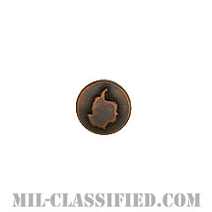 ウィンターオーバー (ブロンズ)(Disk, Wintered Over, Bronze)[リボン用デバイス(Attachment Device)]の画像
