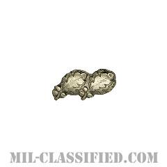 オークリーフクラスター2 (シルバー)(Oak Leaf Cluster, 2, Silver)[リボン用デバイス(Attachment Device)]の画像