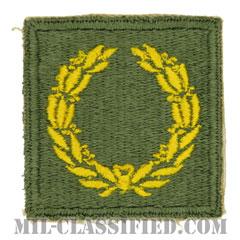 部隊勲功章(Meritorious Service Unit Plaque)[カラー/カットエッジ/パッチ]の画像