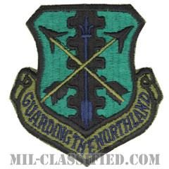 第119戦闘群(119th Fighter Group)[サブデュード/カットエッジ/パッチ]の画像
