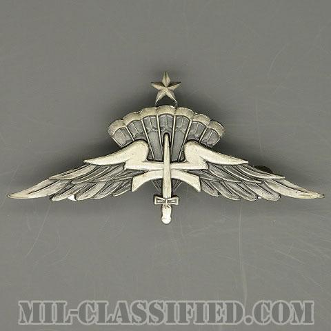 自由降下章(シニア)試作品(Freefall Parachutist Badge, HALO, Senior, Prototype)[カラー/1980s/燻し銀/バッジ/1点物]の画像